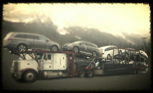 Car Shipping / Transport Services