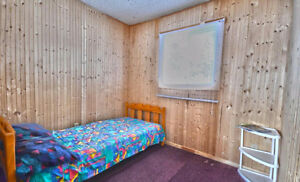 This 3 bedrooms Cottage will charm you. Well priced !! Gatineau Ottawa / Gatineau Area image 8
