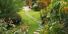 Lawns, Hedges, Trees Daceyville Botany Bay Area Preview