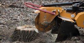 Stump grinder/stump removal Aberdeen city/shire Angus