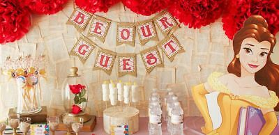 Beauty and the beast flower pom poms tassels  birthday party table decorations (Beauty And The Beast Decorations)