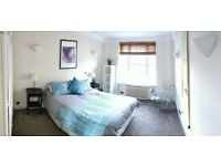 Spacious / Furnished King Master Bedroom