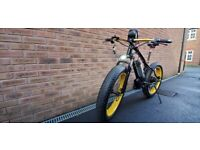 "26"" Lebron Limited Edition e-Bike 500w 8Ah 48V Black and Gold Fat Tyre"