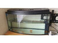 Bow Fronted Fish Tank
