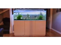 5ft fish tank including equipment