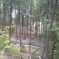 Property On Lake in Beautiful BC. Reduced - Must Sell ASAP!!!!