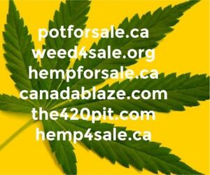 Domain names for sale Cannabis / 420 / Weed / Marijuana / Pot