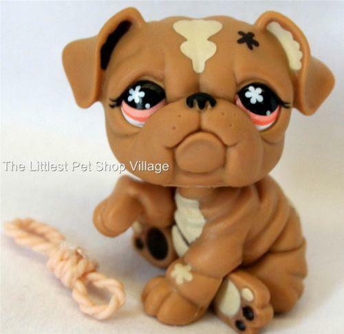 littlest pet shop bulldog littlest pet shop bulldog ebay 9310