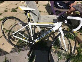 """17"""" Carrera race bike New not ridden"""