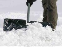 Snow removel (driveways, sidewalks, pathways)