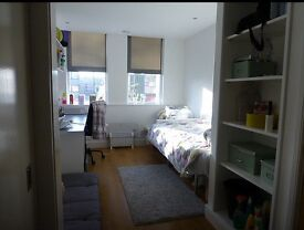 One month ensuite room for rent