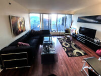 DOWNTOWN LUXURIOUS FULLY FURNISHED ALL INCLUSIVE 1 BDRM APT
