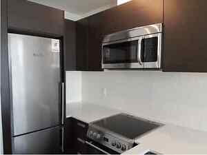 Luxury one bedroom condominium unit #1021 at 1 Thousand Bay