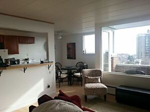 1 Bedroom - View of Lake Superior - Top Floor - Elevator