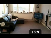 1 bedroom flat looking for 2 bedroom home