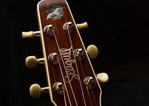 Looking for Wide-Neck Acoustic Electric Guitar - Single Cutaway