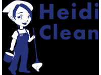 Professional domestic/office cleaners - north London