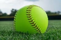 Kitchener Co-Ed Softball Team looking for 2 female players