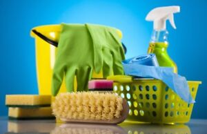 Part time cleaning Lady needed