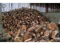Barn stored seasoned logs