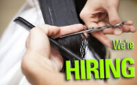 Now Hiring Experienced Stylists