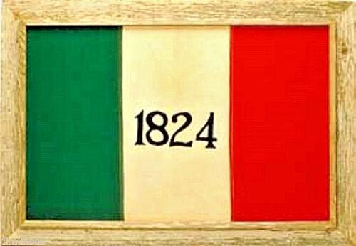 "Texas Alamo Framed Barnwood Flag 20""x38"""