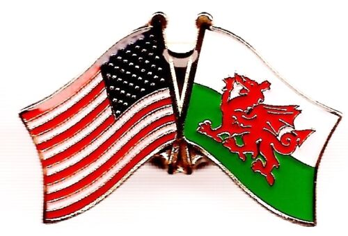 LOT OF 12 Welsh Friendship Flag Lapel Pins - Wales Crossed Flag Pin