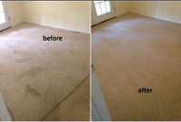 Cleaning services &. Carpet& Shower mold removal