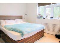 Fancy Double Room in Chelsea area