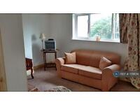 1 bedroom flat in Leicester, Leicester, LE3 (1 bed)