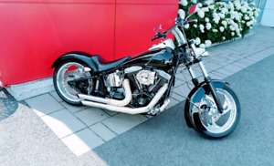 SOFTAIL ARTISANAL UNIQIE