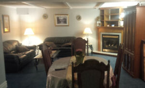 Fully Furnished Basement Apartment For One Person