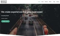 Website Design - Toronto