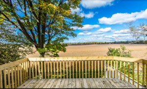 Gorgeous Home with Fantastic Field View - Available December 1st