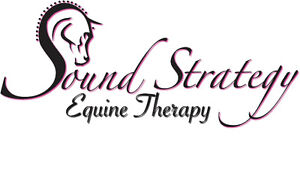 Certified Equine Therapist - Chiropractic and Massage