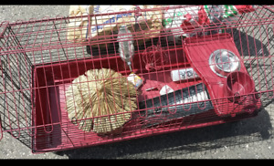 Bunny / Guinea pig cage with accessories