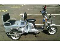 Electric Trike Tricycle Cargo Bike Can Carry up to 4 Kids or use as a tipper Huge load space