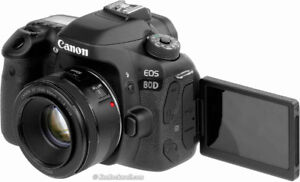 Canon EOS 80D | Canon EF 50mm f/1.8 STM