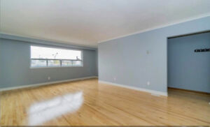Newly Renovated 3 bedroom apartment in South West of Etobicoke