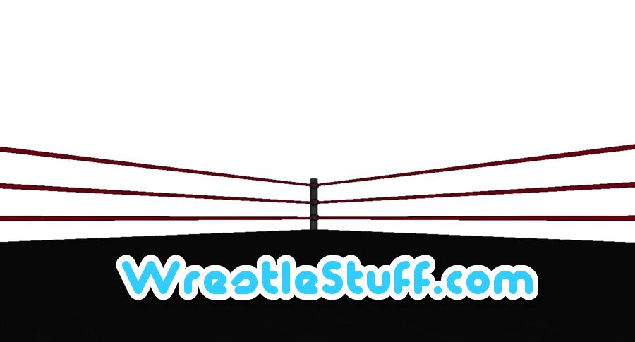 WrestleStuffDotCom