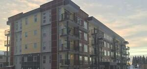 BRAND NEW 2 BEDROOM CONDOS IN PANORAMA HEIGHTS