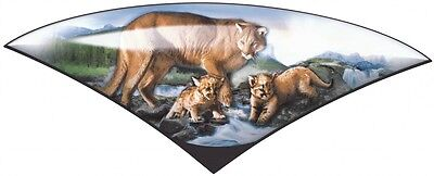 1 RV TRAILER CAMPER PUMA FRONT CAP DECAL GRAPHIC -1279
