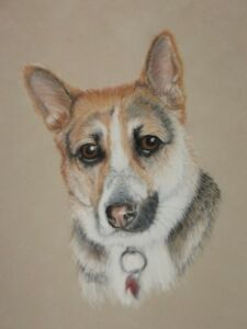 PET PORTRAIT ARTIST-SHEILA BANGA ART