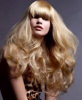 COLD FUSION $ MICRO LINKING HAIR EXTENSIONS ON SALE