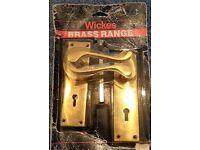 Door Handle on Polished Brass Plates