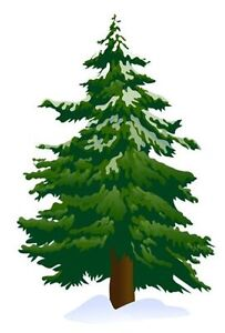 Offering Forestry Services
