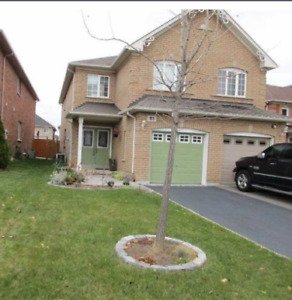 Semi Detached House for Rent in Brampton