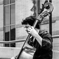 Electric Bass & Doublebass - Martin Blanchet