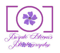 Purple Blooms Photography