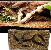 Vivarium Background